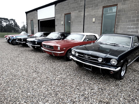 mustangs - m and m automotive